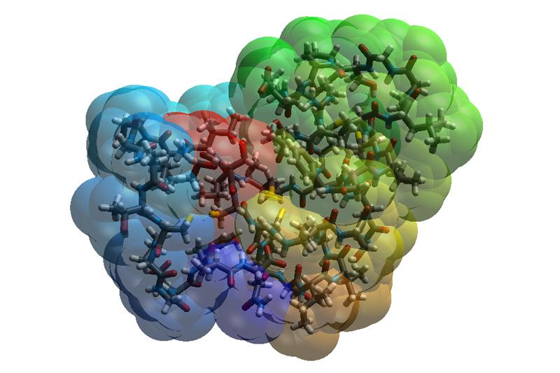 Visualisierung eines Proteins. Die transparente Darstellung zeigt gleichzeitig Oberfläche sowie den Atomaufbau (Stäbchen-Modell) im Innenraum.