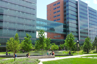 Fünf Monate forschte Corinna Vehlow an der School of Medicine der University of Colorado in Denver bei Prof. Lawrence Hunter.