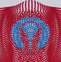 Simulationen machen sichtbar, wie es zur Verbindung der Stoffe kommt. (Bild: SFB 716)