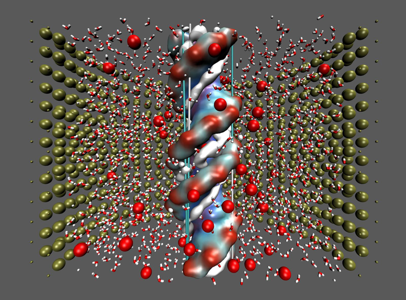 Vereinfachte Darstellung eines DNA-Molekül in einer Pore. Wir untersuchen den Ionenstrom entlang der Pore durch Anlegen eines elektrischen Feldes entlang der Porenachse.