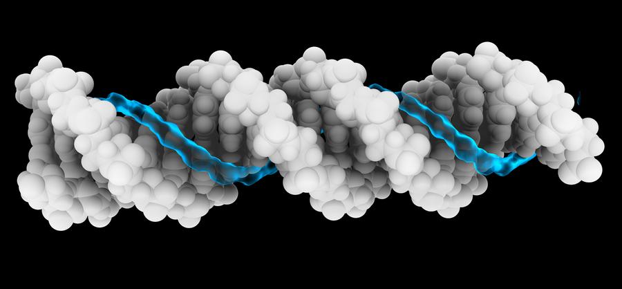 Darstellung des Ionen-Stroms um einen DNA-Strang.