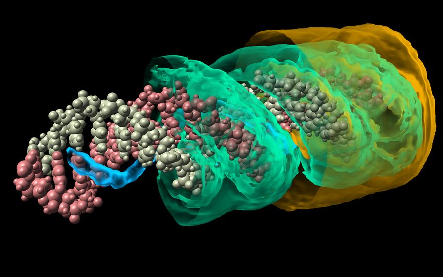 Verteilung von Kaliumionen um ein DNA-Molekül. Auf Flächen ist die Dichte konstant. Die innere, grüne Fläche folgt ganz deutlich der Helixstruktur, während die äußere Fläche beinahe ein Zylinder ist. Wir erkennen daran, dass bereits aus wenigen Nanometer Entfernung DNA in guter Näherung einfach als geladener Stab angenähert werden kann.